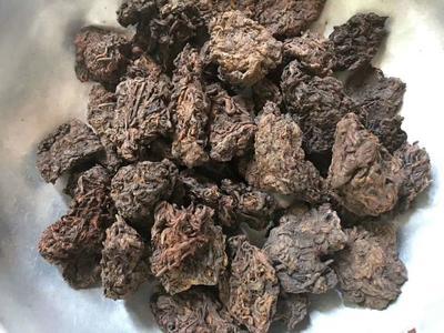 云南省昆明市盘龙区老茶头 散装 特级