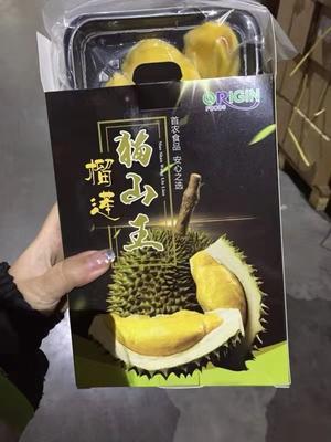 辽宁省大连市西岗区猫山王榴莲 50 - 60%以上 2公斤以下