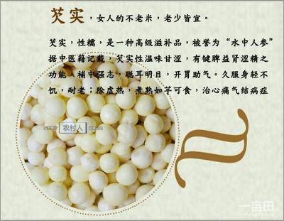 广东省汕头市澄海区鲜芡实