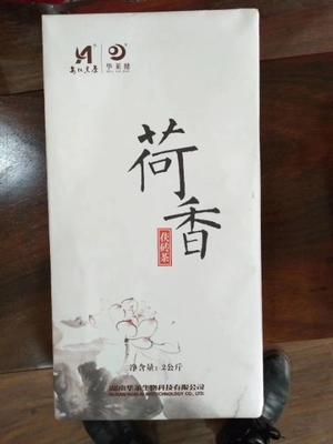 甘肃省平凉市静宁县安化黑茶 盒装 特级