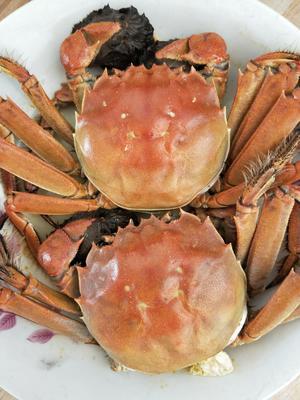 浙江省嘉兴市海盐县太湖河蟹 2.5-3.0两 公蟹