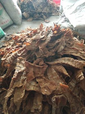 广东省清远市英德市竹笋干 散装 1年以上