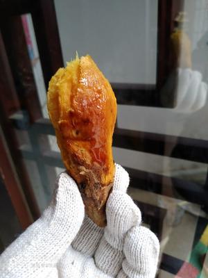 河南省开封市通许县烟薯25 红皮 混装通货