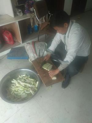 河南省三门峡市陕县萝卜干