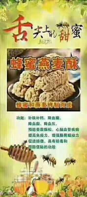 河北省邢台市平乡县燕麦仁