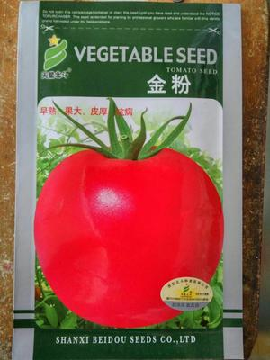 江苏省宿迁市沭阳县粉果番茄种子 95% 杂交一级