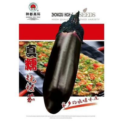 四川省成都市武侯区茄子种子