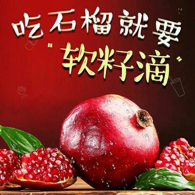 河南省郑州市荥阳市河阴石榴 0.3 - 0.5斤