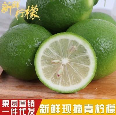 重庆潼南县青柠檬 2 - 2.6两
