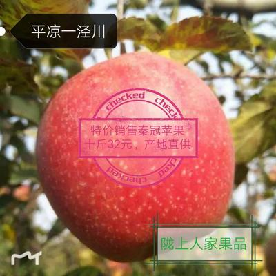 这是一张关于秦冠苹果 纸袋 条红 75mm以上的产品图片