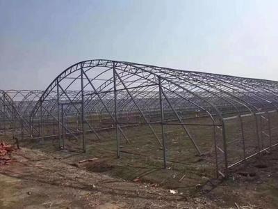 河北省沧州市泊头市钢管大棚