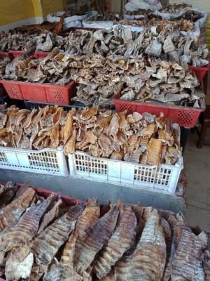 江西省宜春市袁州区干笋尖 袋装 1年以上