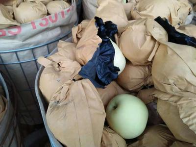 这是一张关于黄元帅苹果 纸袋 黄色 70mm以上的产品图片