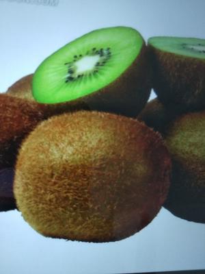 这是一张关于徐香猕猴桃 100~120克的产品图片