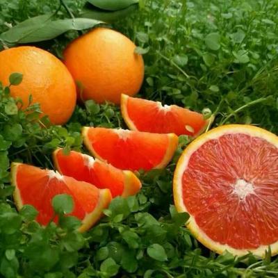 这是一张关于血橙 80-85mm 4-8两的产品图片