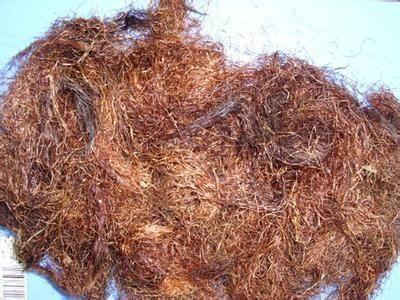 这是一张关于玉米须的产品图片