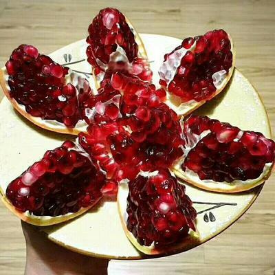 陕西省渭南市富平县红石榴 0.6 - 0.8斤