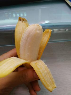 小米蕉 果园直销 小果 实惠九斤装包邮