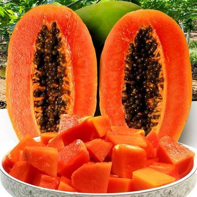 红心木瓜苗 当年种当年挂果水果木瓜,矮华,当年挂果,美颜养颜,丰胸