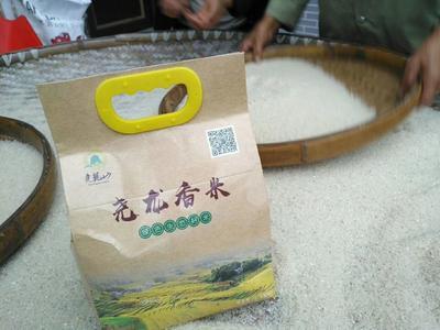 贵州省遵义市桐梓县香米 绿色食品 晚稻 一等品