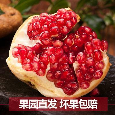 福建省漳州市平和县临潼石榴 0.8 - 1斤
