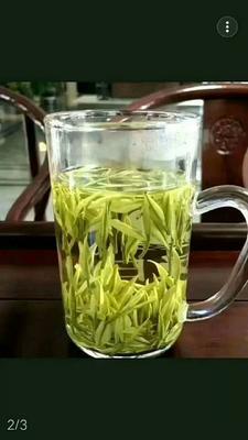 这是一张关于安吉白茶 罐装 一级的产品图片
