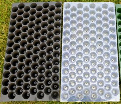这是一张关于育苗盘的产品图片