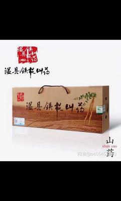 娌冲崡鐪佺劍浣滃競娓╁幙閾佹灞辫嵂 50~70cm