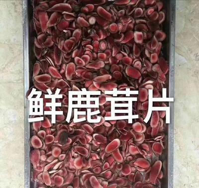 这是一张关于梅花鹿鹿茸的产品图片