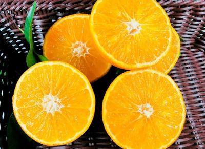 这是一张关于爱媛38号柑桔 7.5 - 8cm 3两以上的产品图片