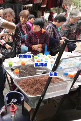 广东省广州市白云区白胡椒