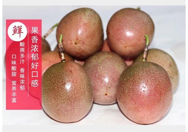 紫色百香果 60 - 70克