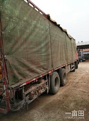 这是一张关于超荷兰15号土豆 统货的产品图片