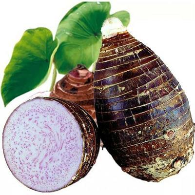 广西壮族自治区玉林市玉州区荔浦芋头 5cm以上