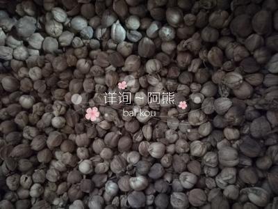 福建省厦门市同安区豆蔻