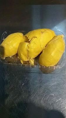 广西壮族自治区防城港市港口区猫山王榴莲 90%以上 2 - 3公斤