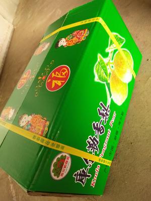 这是一张关于红香酥梨 60-100g 55mm的产品图片