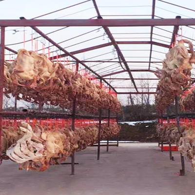 安徽省六安市金安区鹅肉类 冷冻