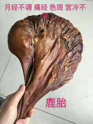 吉林省长春市双阳区鹿胎粉