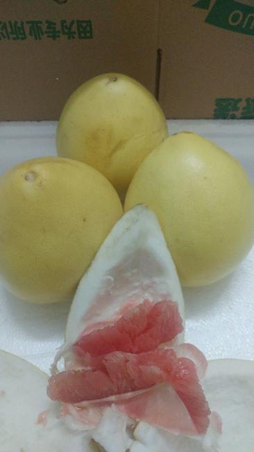 红肉蜜柚 2斤以上 约10.0斤/箱