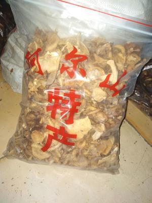 吉林省白城市洮北区香菇丁 袋装 1年以上