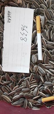 内蒙古自治区乌兰察布市丰镇市363葵瓜子 袋装