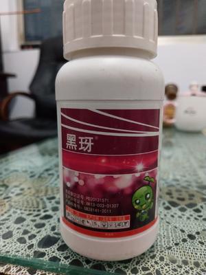 吡虫啉 水剂 瓶装 低毒