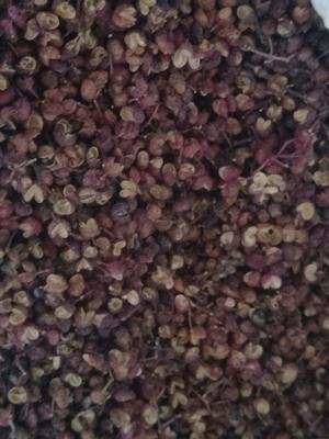 四川省凉山彝族自治州木里藏族自治县大红袍花椒 干花椒 二级