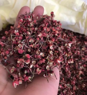 陕西省铜川市耀州区大红袍花椒 干花椒 一级