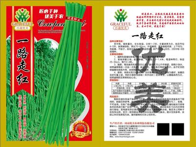 河南省周口市商水县豆角种子 ≥98%