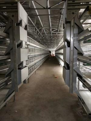 河南省驻马店市西平县层叠式本交笼