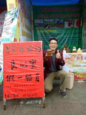 广西壮族自治区桂林市灌阳县土蜂蜜 玻璃瓶装 100% 2年以上