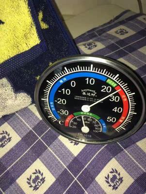 这是一张关于水果温度计的产品图片