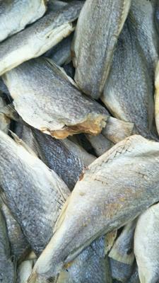 这是一张关于鱼干类的产品图片